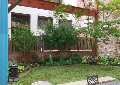 Queenvillage: Full Backyard Upgrade